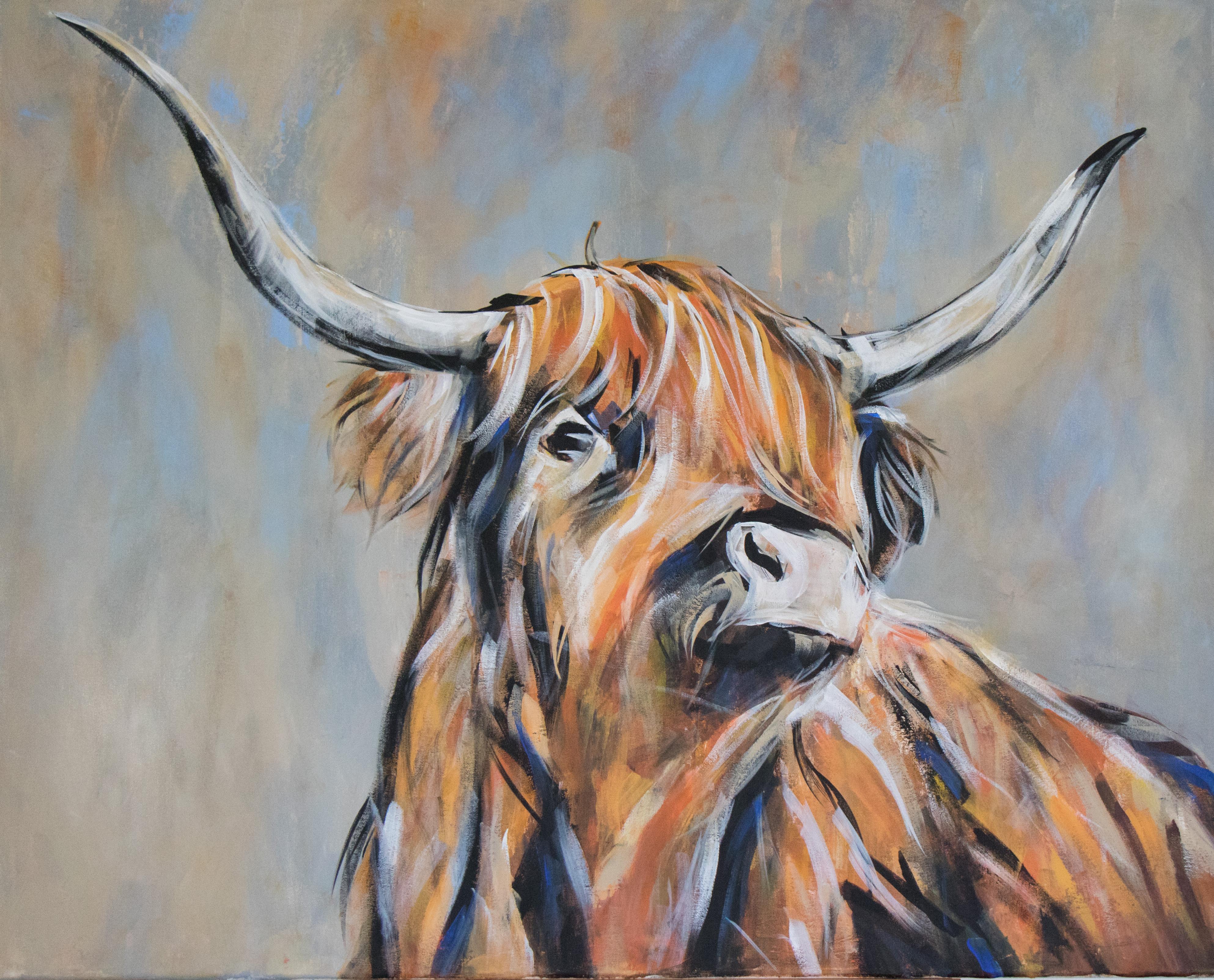 Highlander (Hochlandrind)
