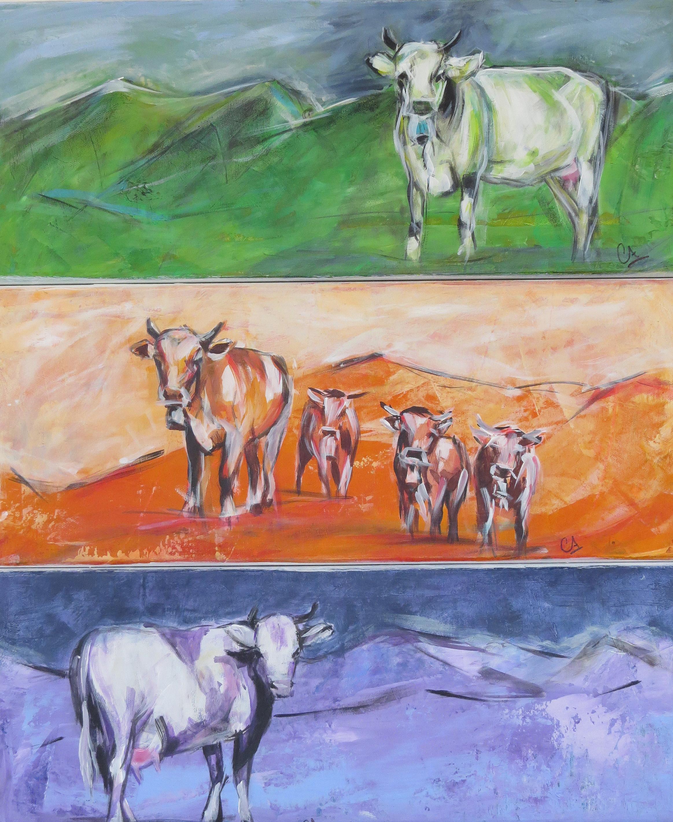 3er Serie Kühe